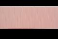 briz yashzik (1)